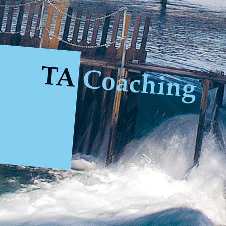 TA in Luzern – Kursprogramm